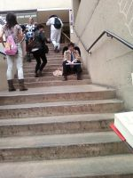 Cas on the stairs by regates