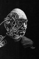 Locutus of Borg by astomious