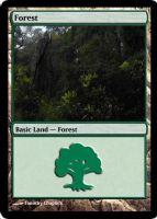 Magic Forest Cumberland Island Photo Card VI by lizking10152011