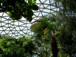The Bloedel Conservatory Dome 1 by mc1964