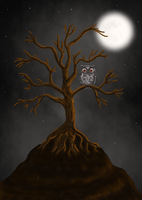Owl In A Tree by December012