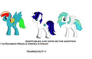 Adoptable Pony's by Teamscout11