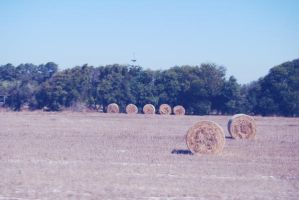 countryside obstacles by ThatPhotograph