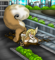 Kitila: Shopping mall difficulties by AkuOreo