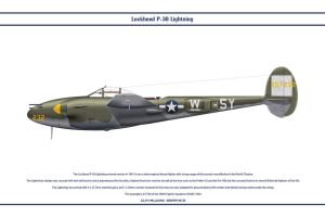 P-38J USAAF 384th FS 1 by WS-Clave