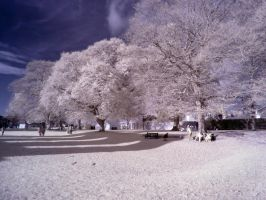 Glastonbury in infrared: 4 by yaschaeffer