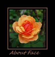 About Face by LadyAliceofOz