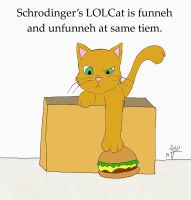 Schrodinger's lolcat by greenfairy87