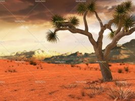 Wild West Desert 01 by Trisste-stocks