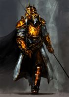 Kingsguard from Game of Thrones by peterputty
