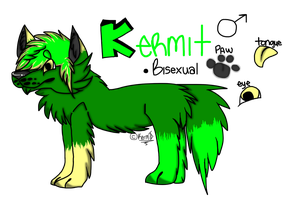 Kermit Reference 2014 by KermTheDoge