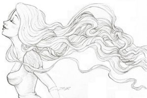 Rapunzel Sketch - Hair Flowing by love4me