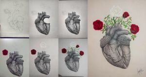 Heart and roses by WilliamDreyfus
