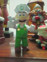 Fire Luigi Assembled by gpsc