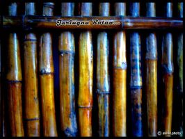 The Rattan by drkines