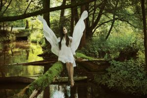 Angel by haania