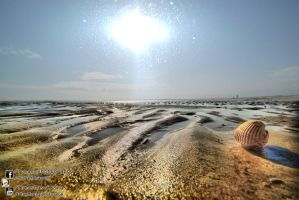 Rye Beach 2013.08.18 by Tomas Mascinskas by TMProjection