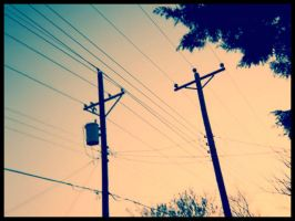 powerlines part 2. by untold-chapter