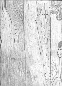 Wood Texture study by DragonLugia
