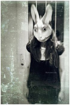Lilly the Rabbit by MissHeroin