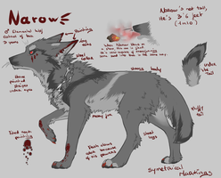 Reference Sheet - Narow by SorahChan