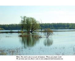 great flood (70) by Mithgariel-stock