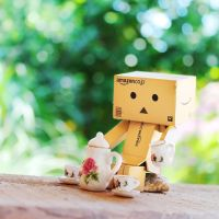Danbo Drinking Tea All Alone by Kara-a