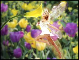 Fairy by thedarkgecko