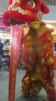 Chinese New Year Lion Dance (Video Link) by Codetski101