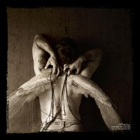 Tangled angels .II. by temporary-peace
