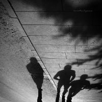 shadows by pigarot