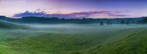 Foggy morning 2 by adypetrisor