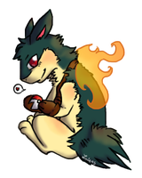 Kindle the Typhlosion by lucie45
