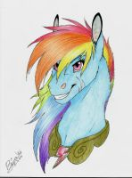 Rainbow Dash Portrait by Luna68