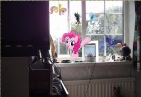Ponys outside my bedroom window by wingdune41