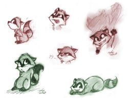 Even More Raccoons by TehMomo