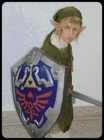 Legend of Zelda: Link by gamefan23