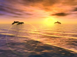 Dolphins by LeQueb