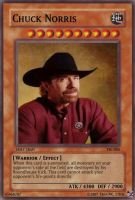 TS cards 4: Chuck Norris by TalkingStick