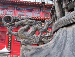 mean while in china dragon thingy by OhioErieCanalGirl