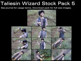 Taliesin Wizard Stock Pack 5 by Durkee341