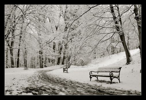 Snow Tranquility by ivekvatrozic