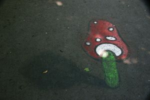 Mushroom on the ground by Heurchon