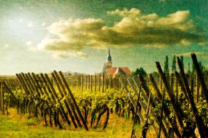The vineyard of the Lord by Louisolah