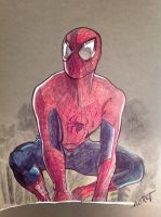 Spidey color pencils by alfret