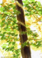 Light in the Tree by angelvi
