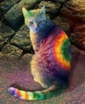 rainbowcat by blaike38