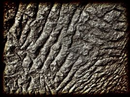 Chiselled by awjay