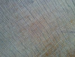 Wood Texture 16 by Fea-Fanuilos-Stock