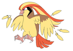 Pidgeot used Feather Dance by Kainaa